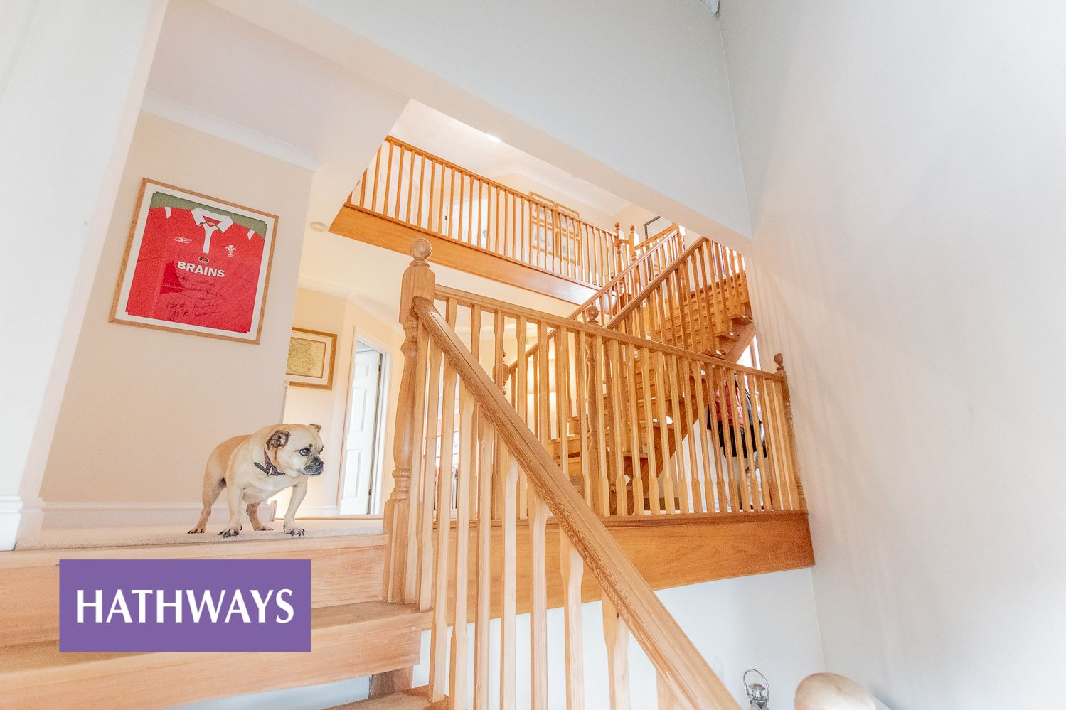 4 bed house for sale in Trinity View  - Property Image 6