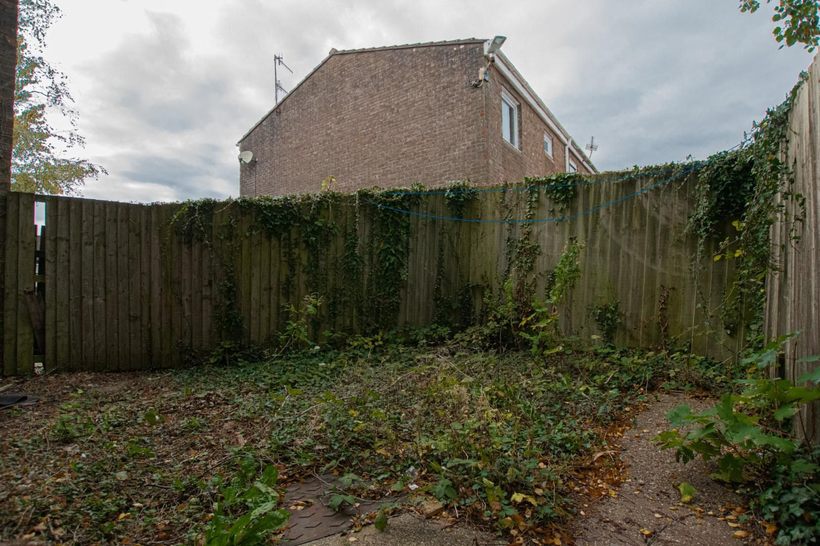 2 bed flat to rent in Llangattock Court  - Property Image 19