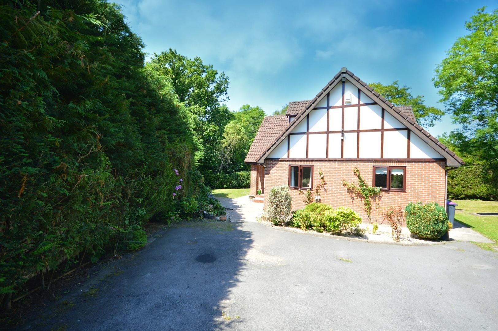 3 bed house to rent  - Property Image 16