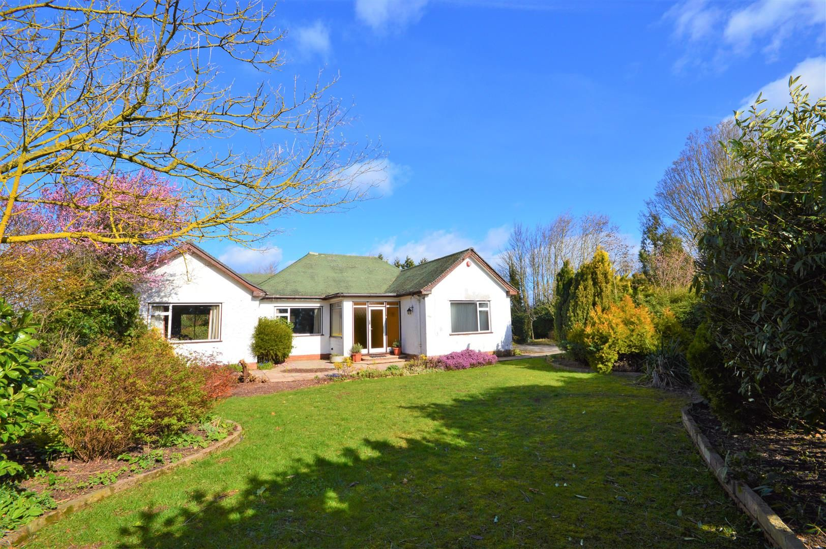 3 bed detached-bungalow for sale in Burghill, HR4