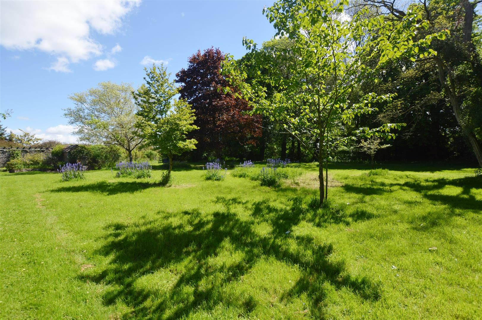 6 bed country house for sale in Pembridge 14