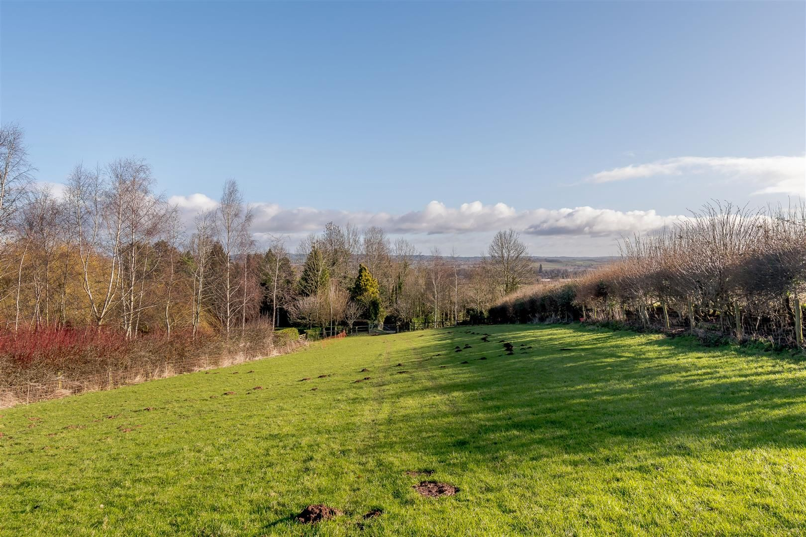 5 bed detached for sale in Burghill 27