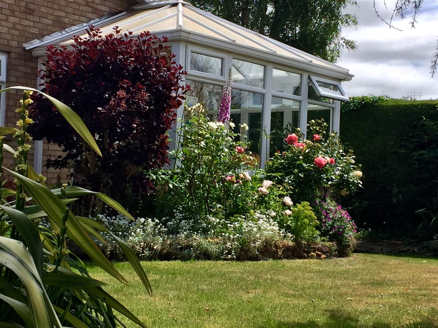 2 bed detached bungalow for sale in Bodenham 12