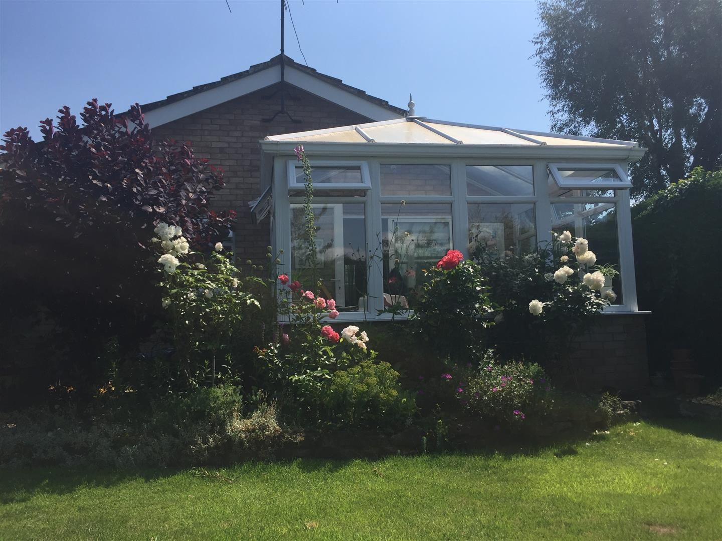2 bed detached bungalow for sale in Bodenham 14