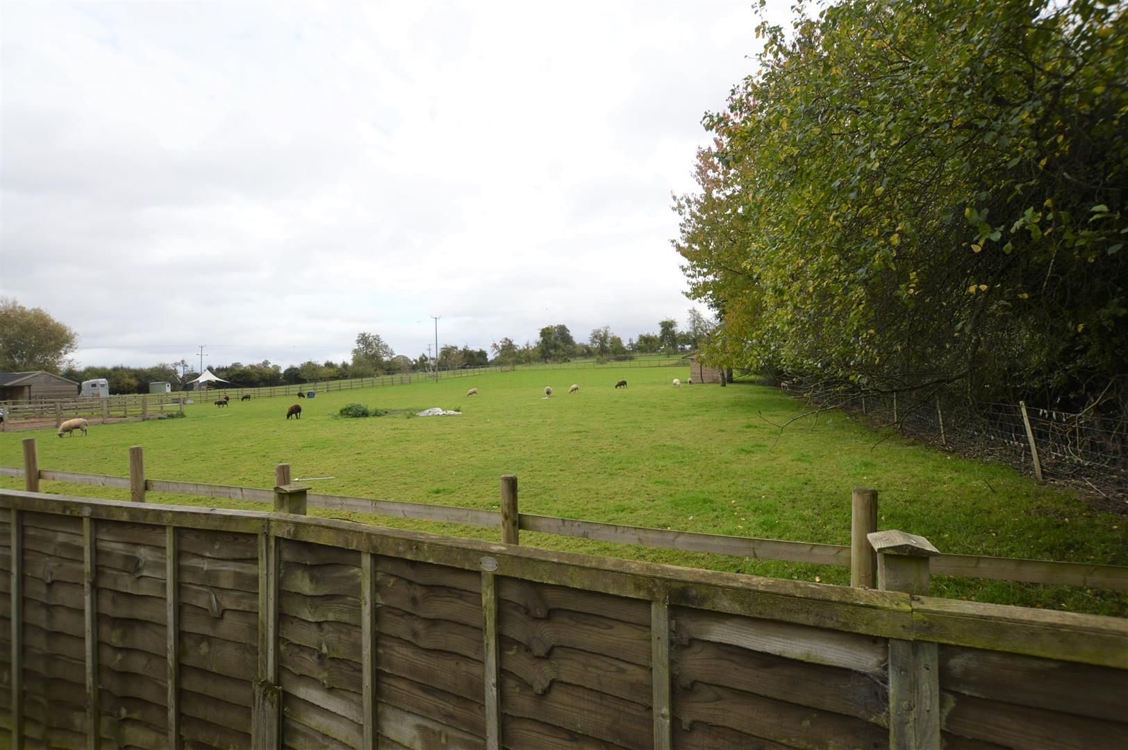 3 bed detached bungalow for sale in Dilwyn 10