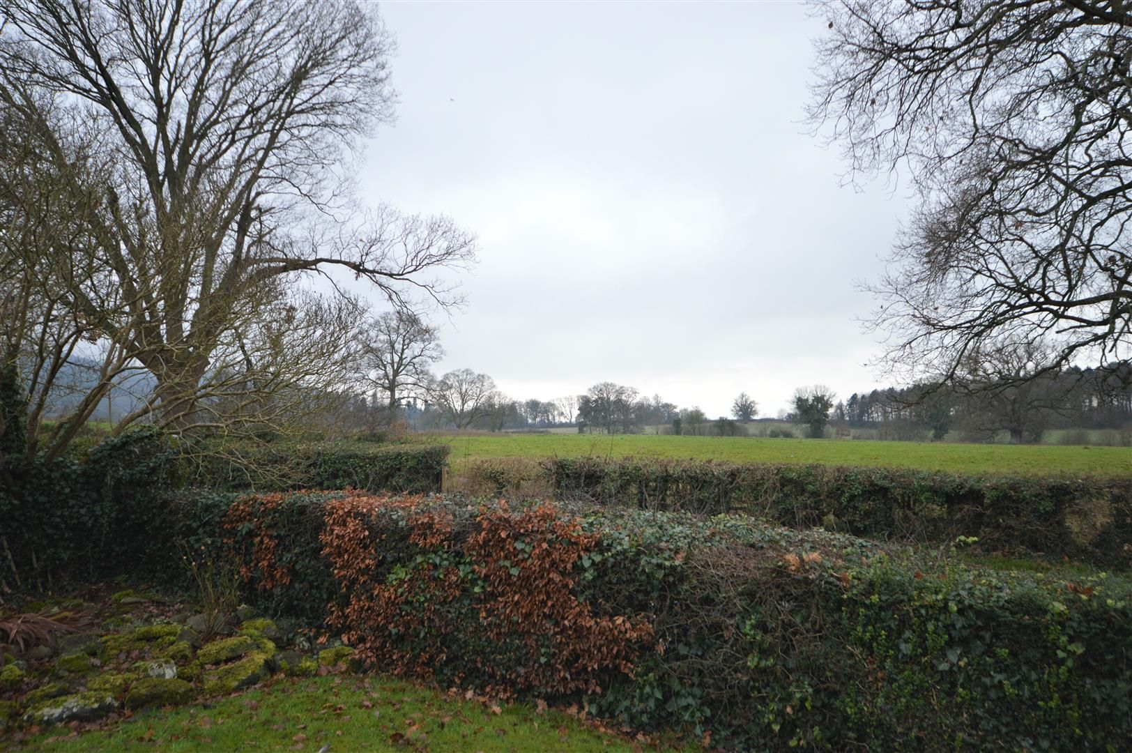 2 bed detached bungalow for sale in Weobley 15