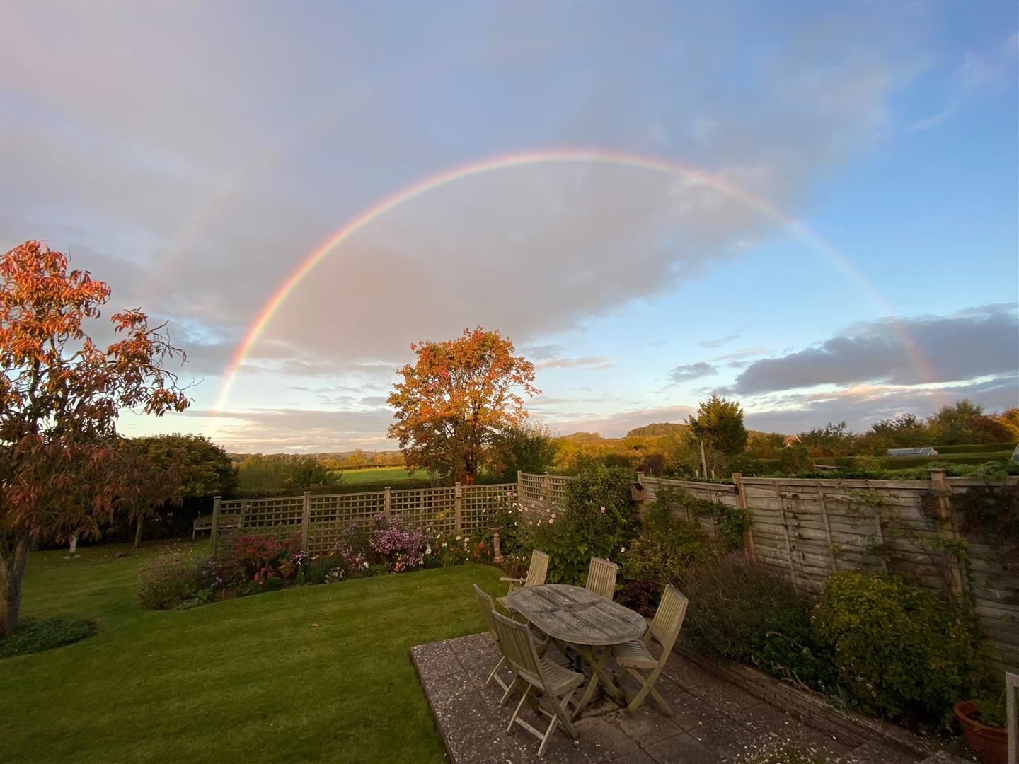 3 bed detached bungalow for sale in Bodenham 21