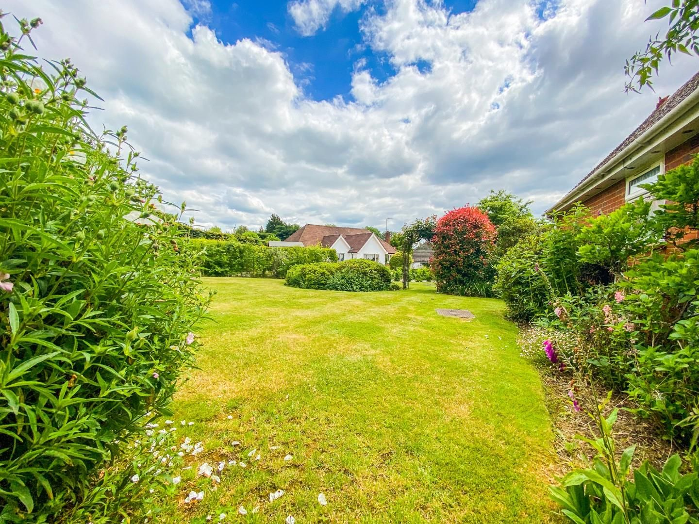 4 bed detached bungalow for sale in Send 15