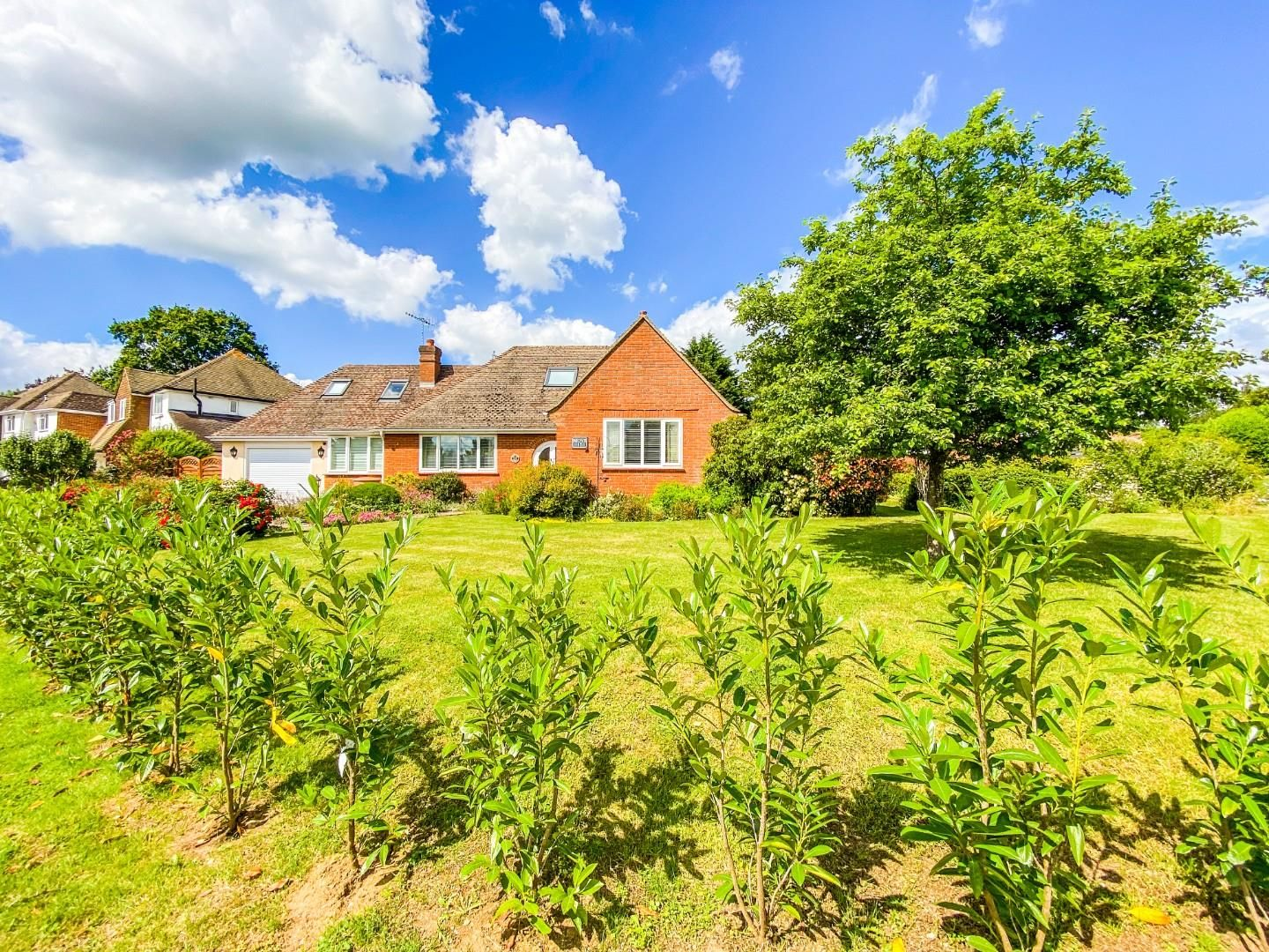 4 bed detached bungalow for sale in Send 18